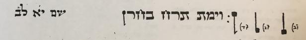 Torah Shleymah p.165